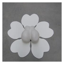 beeld: Lotus